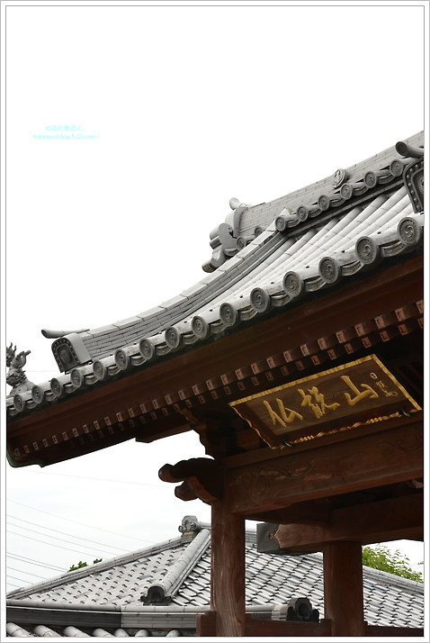 TKN_4916.jpg